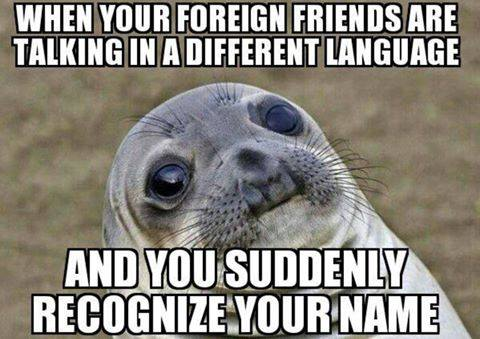 memes for translators and interpreters language memes - Waterpolo Amsterdam - DJK-ZAR